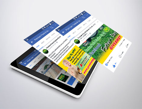 GGA GRAPHICS Facebook Marketing for Premium Pools & Gardens