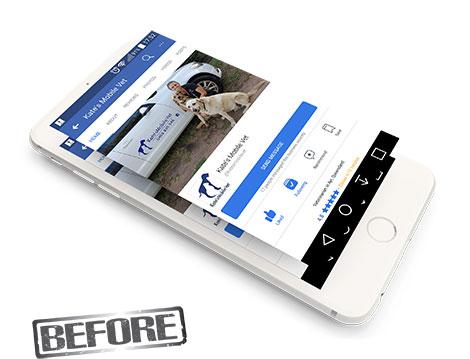 kates Mobile Vet Facebook before